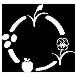 Yoga e Donna. Logo